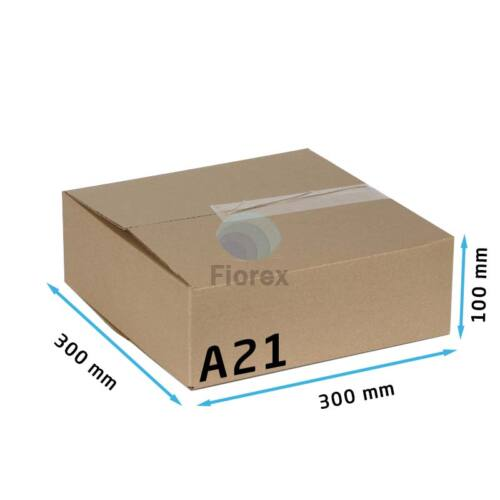 A21 doboz 300x300x100mm TF kartondoboz